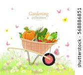 Rustic Garden Wheelbarrow With...