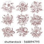 vector set of images of... | Shutterstock .eps vector #568894795