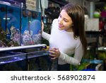 Stock photo smiling young brunette looking at aquarium fish in the store 568902874