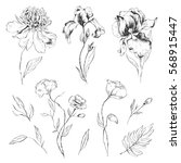 Set of hand-drawn flowers. Peony, iris, poppies and leaves design for wedding invitations, greeting cards, packages, T-shirts, labels and other.