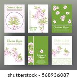 sakura  cherry. set of six... | Shutterstock .eps vector #568936087