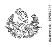 hand drawn strawberry isolated... | Shutterstock .eps vector #569051749