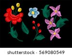 beautiful flowers embroidery... | Shutterstock .eps vector #569080549