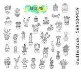 succulents and cacti hand drawn ... | Shutterstock .eps vector #569104459