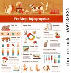 Stock vector pet shop infographic set with veterinary and hygiene symbols flat vector illustration 569133835