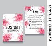 vector brochure flyer design... | Shutterstock .eps vector #569152291