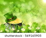 sunny background with clover... | Shutterstock .eps vector #569165905