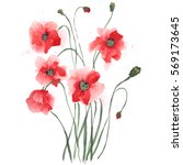 Poppies   Painted In Gouache....