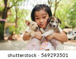 Stock photo happy asian child playing with thai dog homeless poor kid holding cute pet at home 569293501