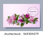 cosmetic product  flowers... | Shutterstock .eps vector #569304379