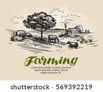 Farm Sketch. Rural Landscape ...