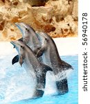 Three Dolphins Performing A...