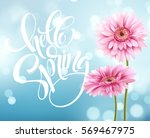 gerbera flower background and... | Shutterstock .eps vector #569467975