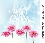 gerbera flower background and... | Shutterstock .eps vector #569468059