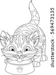 cat coloring page   Shutterstock .eps vector #569473135