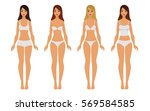 types of woman fashion... | Shutterstock .eps vector #569584585