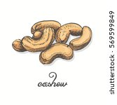 isolated cashew on a white... | Shutterstock .eps vector #569599849