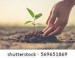 the hand of the men were... | Shutterstock . vector #569651869