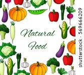 veggies poster. vector... | Shutterstock .eps vector #569666209