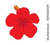 hibiscus flower illustration | Shutterstock .eps vector #569666569