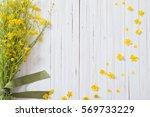 summer flowers on wooden... | Shutterstock . vector #569733229