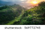 Rain Forest Mountain In The...