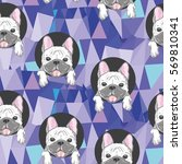 dog bulldog  bulldog vector... | Shutterstock .eps vector #569810341