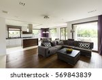 light and modern house with...   Shutterstock . vector #569843839