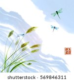 leaves of grass  dragonflies... | Shutterstock .eps vector #569846311