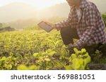 agronomist using a tablet for... | Shutterstock . vector #569881051
