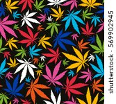 colorful cannabis leaves on... | Shutterstock .eps vector #569902945