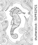 hand drawn sketch of seahorse... | Shutterstock .eps vector #569932921