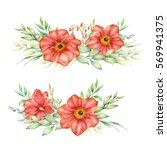 watercolor hand drawn flowers...   Shutterstock . vector #569941375