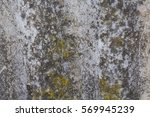 Texture Of Old Grey Wood With...
