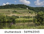Small photo of Vineyard at the Saale in Germany of the Saale-Unstrut wines.