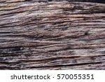 old wooden texture background | Shutterstock . vector #570055351