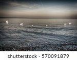 beautiful ocean sunset in the... | Shutterstock . vector #570091879