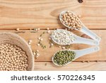 soybeans  green beans and... | Shutterstock . vector #570226345