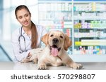 dog. | Shutterstock . vector #570298807