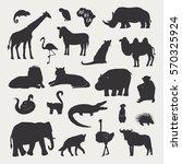 african animals vector... | Shutterstock .eps vector #570325924