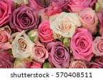 mixed pink roses in a floral... | Shutterstock . vector #570408511
