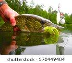 Wisconsin northern pike fishing