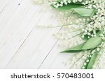 May Lily On Wooden Background