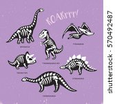 funny sketchy fossil dinosaurs... | Shutterstock .eps vector #570492487