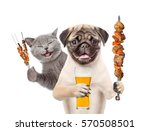 Stock photo kitten and puppy with beer and grilled meat on skewer isolated on white background 570508501