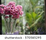 flower in pink | Shutterstock . vector #570585295