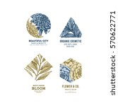 simple logo collection.... | Shutterstock .eps vector #570622771