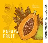 papaya fruit vintage design...   Shutterstock .eps vector #570622855