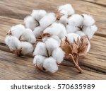 fluffy cotton ball of cotton... | Shutterstock . vector #570635989