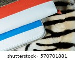 closeup of stylish glamorous... | Shutterstock . vector #570701881